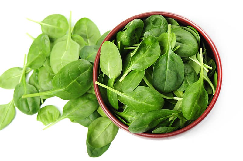 spinach Hydroponic Vegetables