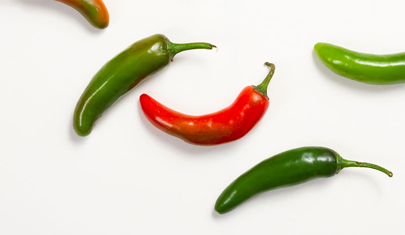 peppers Hydroponic Vegetables