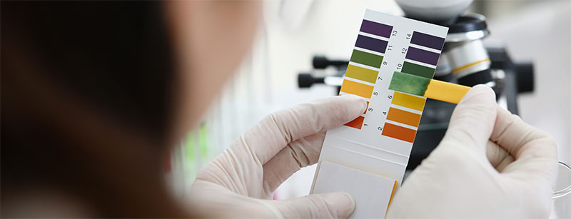 Check pH Level in hydroponic systems