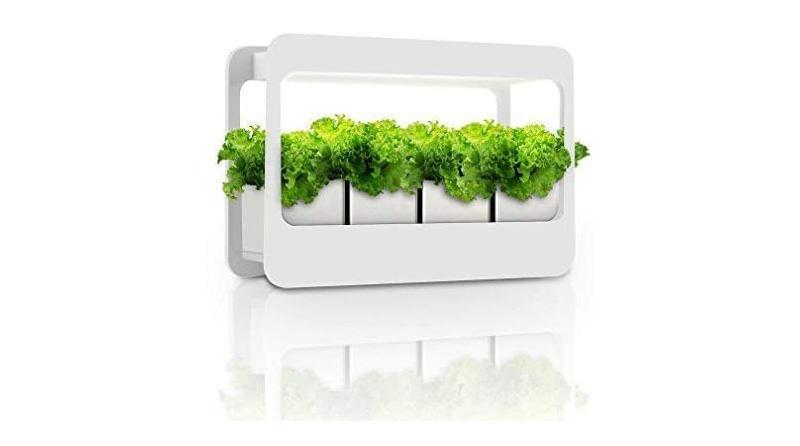 GrowLED Plant Indoor Garden