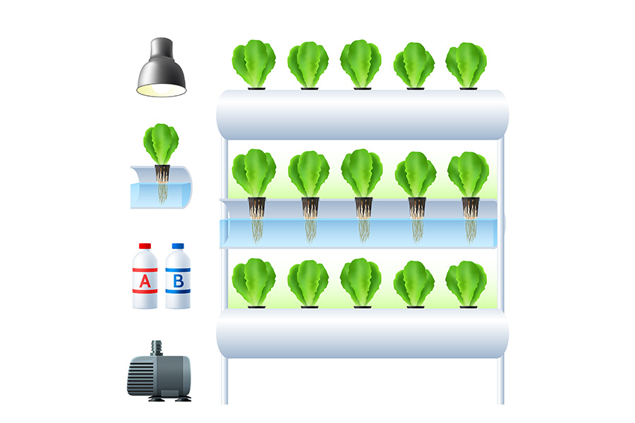 Hydroponic Systems for Home
