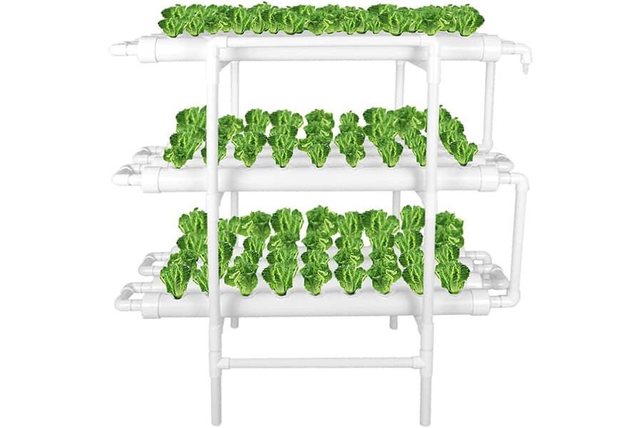 LAPOND Hydroponic Grow Kit